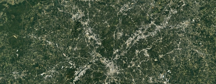 Atlanta Canopy - G Earth - 1440-500